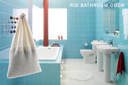 Rid-Bathroom-Odor