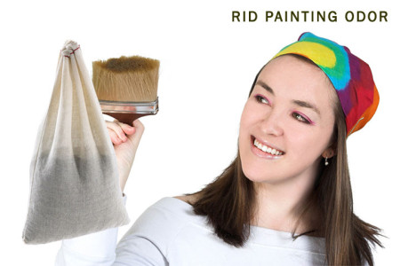 Rid-Painting-Odor