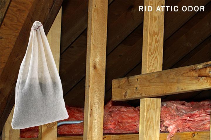 Rid-Attic-Odor