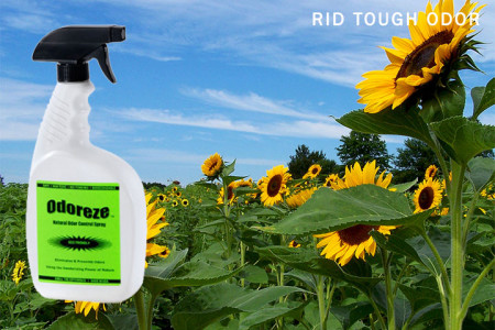 Rid-Tough-Odor