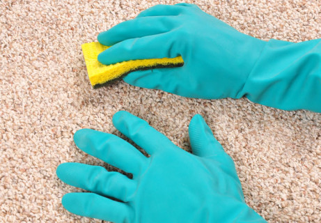 Choosing-Carpet-Cleaning-Products
