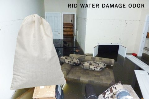 Rid Water Damage Odor